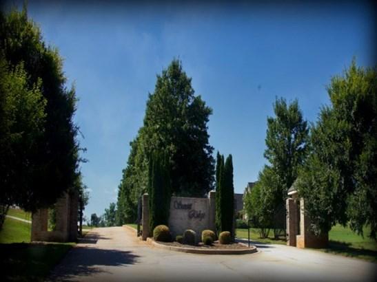 Residential Lot - Seneca, SC (photo 5)