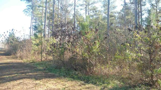 Residential Lot - Six Mile, SC (photo 4)