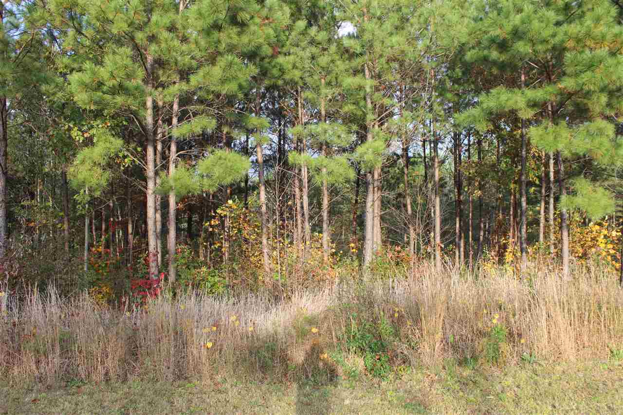 Residential Lot - West Union, SC (photo 1)