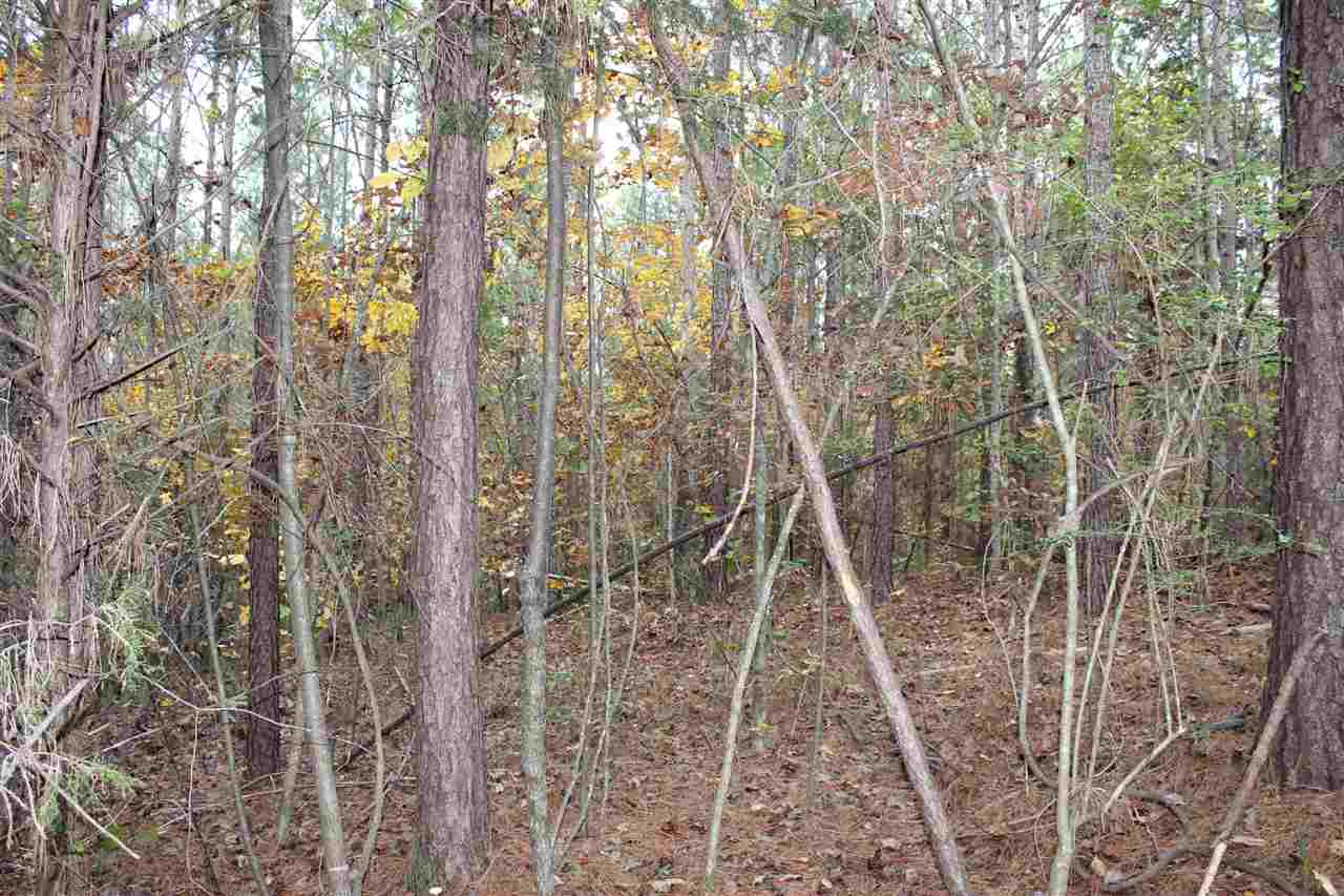 Residential Lot - West Union, SC (photo 3)