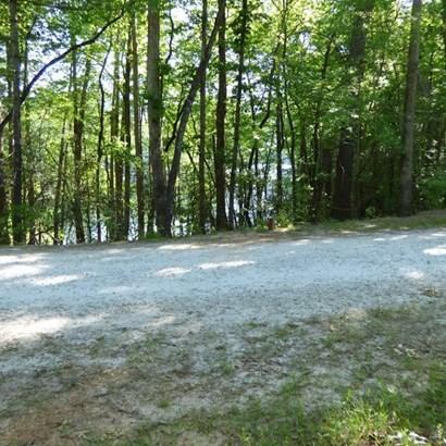 Residential Lot - Mt. Rest, SC (photo 3)