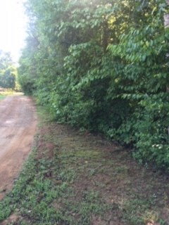 Acreage/Farm - Westminster, SC (photo 1)