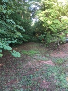 Acreage/Farm - Westminster, SC (photo 4)