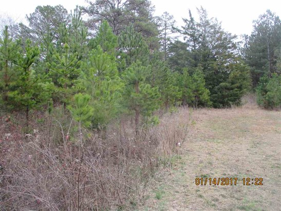 Residential Lot - Townville, SC (photo 5)