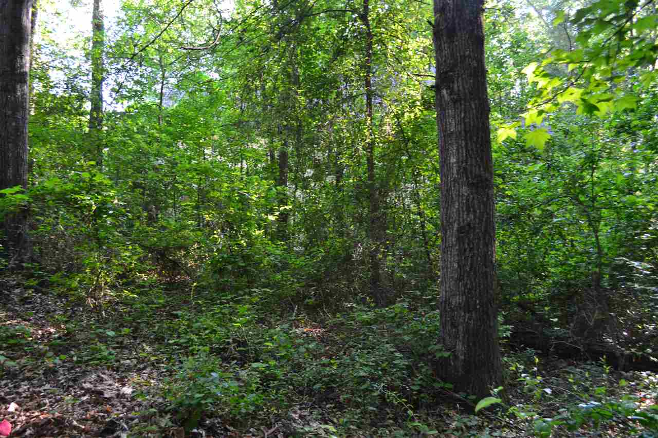 Residential Lot - Pendleton, SC (photo 4)