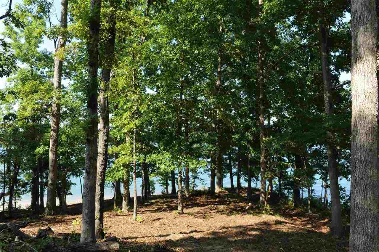 Residential Lot - Seneca, SC (photo 4)