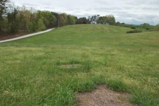 Acreage/Farm - Long Creek, SC (photo 5)