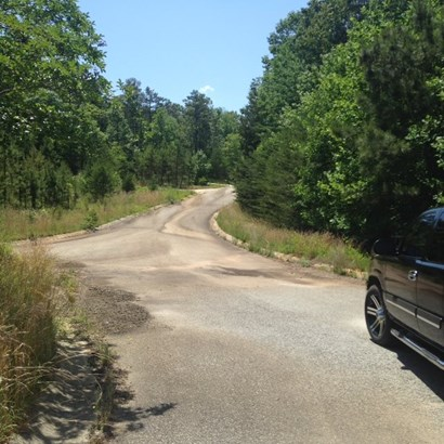 Residential Lot - Lavonia, GA (photo 3)