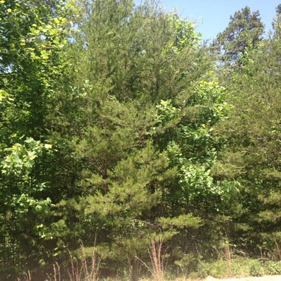Residential Lot - Lavonia, GA (photo 1)