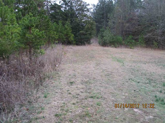 Residential Lot - Townville, SC (photo 3)