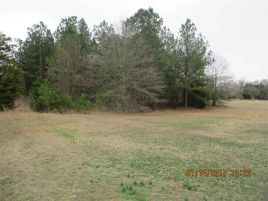 Residential Lot - Townville, SC (photo 4)