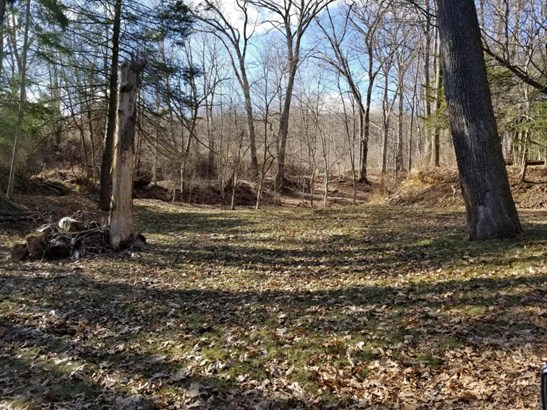 Vacant Land - West Wyoming, PA (photo 2)