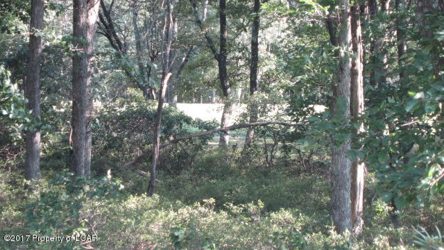 Vacant Land - Hazle Twp, PA (photo 1)