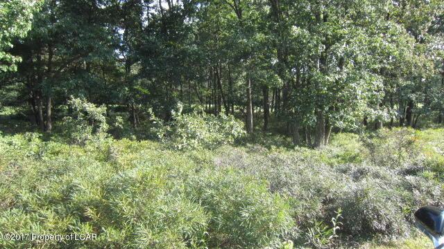Vacant Land - Hazle Twp, PA (photo 2)