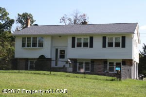 503 Birch Road, Wapwallopen, PA - USA (photo 1)