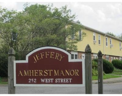252 West Street 14, Amherst, MA - USA (photo 1)