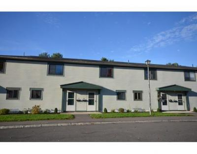 170 East Hadley Road 60, Amherst, MA - USA (photo 1)