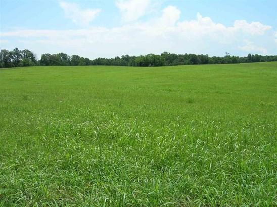 Agricultural - HOWARDSVILLE, VA (photo 1)