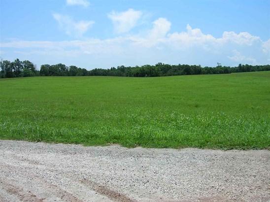 Agricultural - HOWARDSVILLE, VA (photo 2)