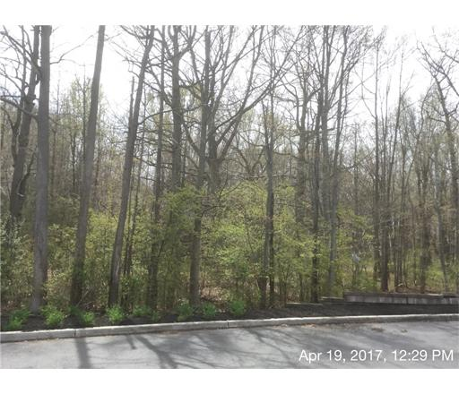 Lots and Acreage - 1112 - Robbinsville, NJ (photo 3)