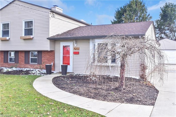4213 Selkirk Ave, Austintown, OH - USA (photo 2)