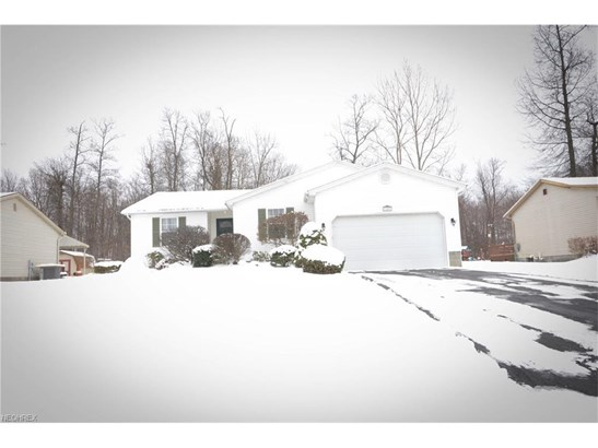1187 Signature Dr, Austintown, OH - USA (photo 1)
