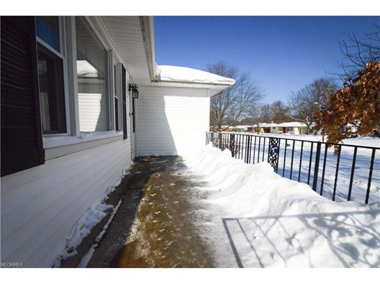 3856 Palmetto Dr, Youngstown, OH - USA (photo 2)
