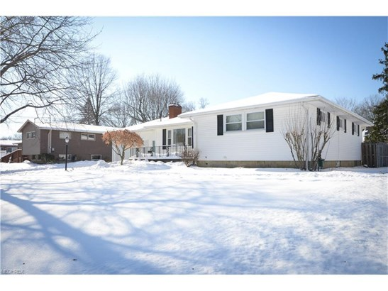 3856 Palmetto Dr, Youngstown, OH - USA (photo 3)