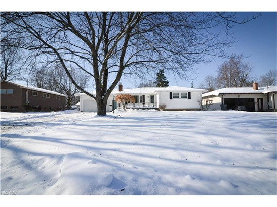 3856 Palmetto Dr, Youngstown, OH - USA (photo 4)