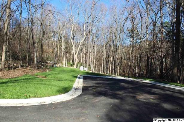 1719 Stonehurst Drive E, HUNTSVILLE, AL - Photo 1 (photo 1)