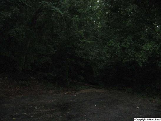80 +- Acres Shinault Hollow Road, GRANT, AL - Photo 3 (photo 3)