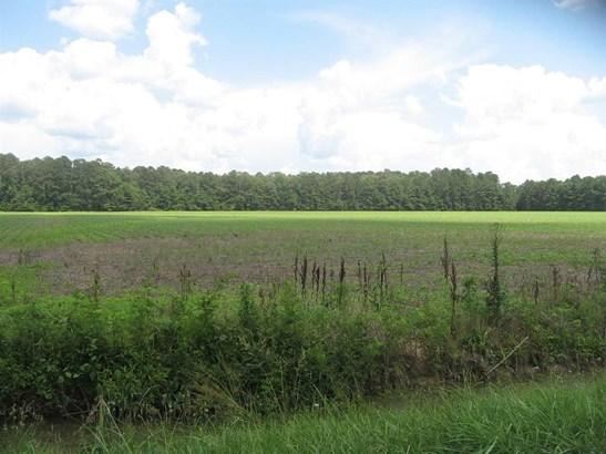 30 Acres Piney Woods Road, OWENS CROSS ROADS, AL - Photo 1