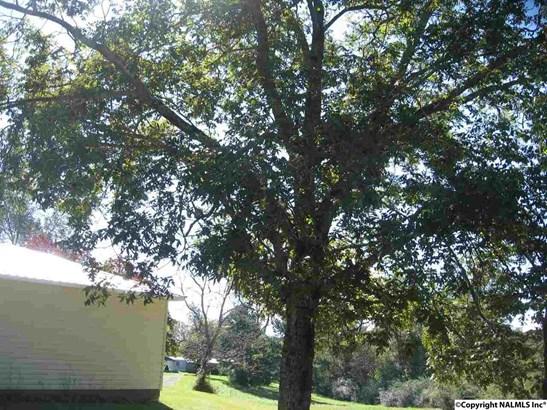 6388 Simpson Point Road, GRANT, AL - Photo 4 (photo 4)