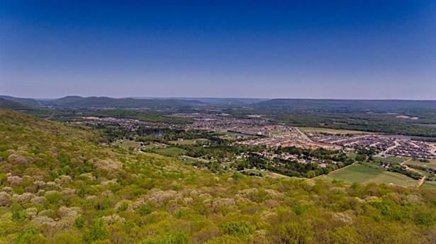 42 Bluff View Drive, HUNTSVILLE, AL - Photo 4 (photo 4)