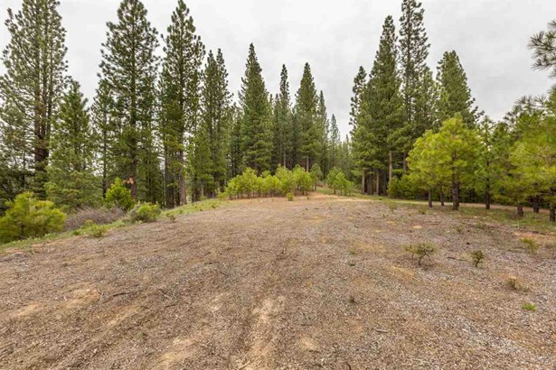 Acreage - Graeagle, CA (photo 5)