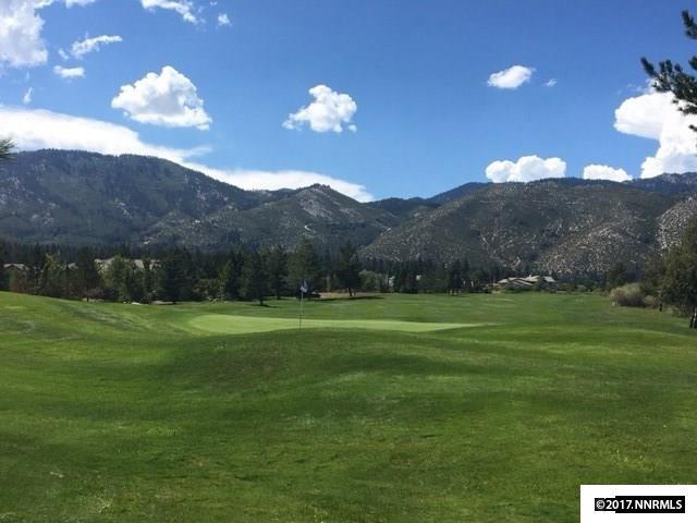 VACANT LAND - Washoe Valley, NV (photo 4)