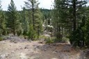 Residential Lot - Clio, CA (photo 1)