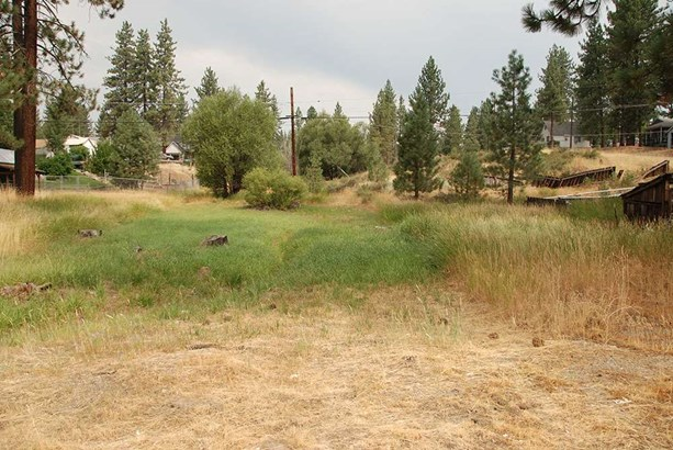 Acreage - Portola, CA (photo 1)