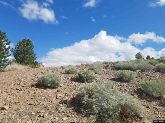 VACANT LAND - Sparks, NV (photo 4)