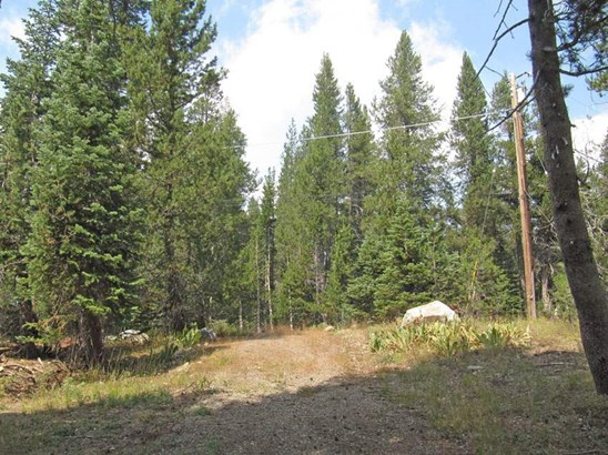 Residential Lot - Soda Springs, CA