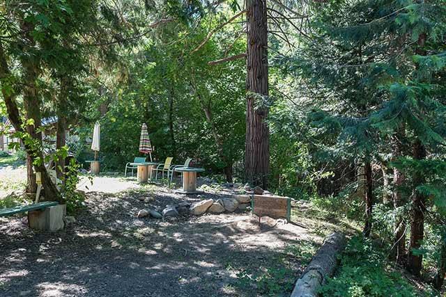 Acreage - Sierra City, CA (photo 3)