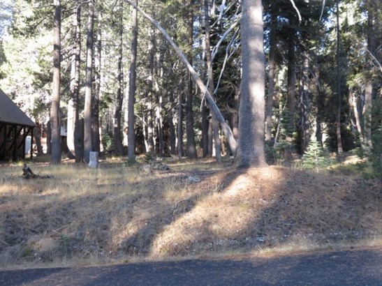 Residential Lot - Soda Springs, CA (photo 3)