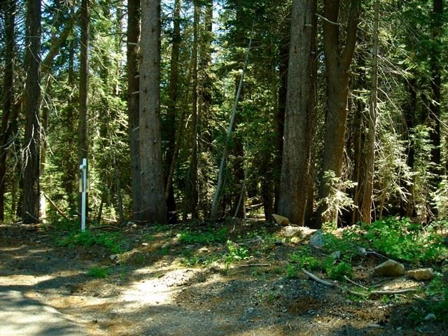 Residential Lot - Soda Springs, CA (photo 2)