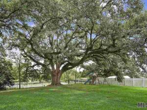 16442 Jefferson Oaks Dr, Prairieville, LA - USA (photo 2)