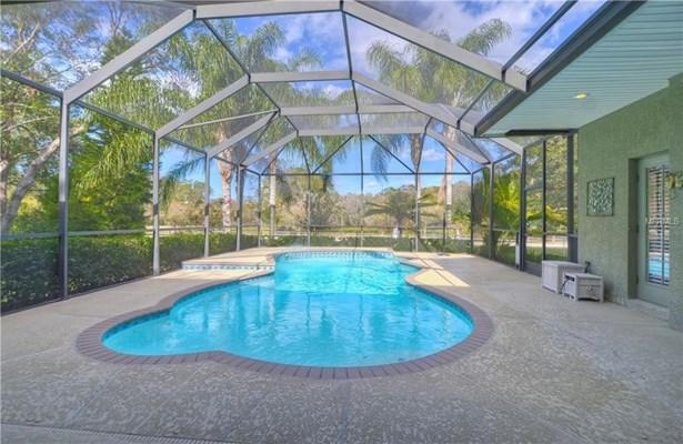 1508 Camphor Cove Drive, Lutz, FL - USA (photo 4)