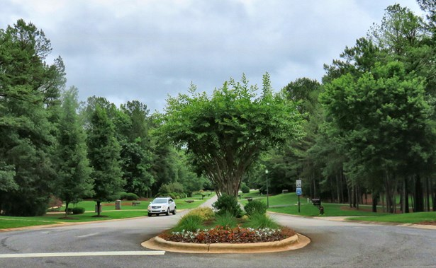 845 Savile Lane, Fort Mill, SC - USA (photo 1)