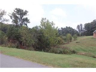 00000 Shelby Drive, Monroe, NC - USA (photo 3)
