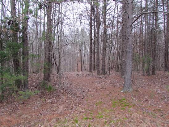 1309, 1311 Creekview Drive, Gastonia, NC - USA (photo 4)