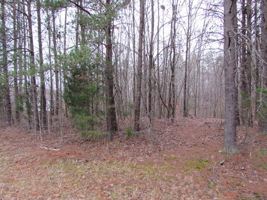 1309, 1311 Creekview Drive, Gastonia, NC - USA (photo 5)