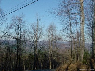0 Fire Tower Road, Bostic, NC - USA (photo 1)